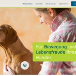 Hundephysio-Minden.de Webdesign Startseite Desktop PC / Laptop