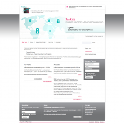 ProRisk.de: Drupal 7 CMS Webdesign